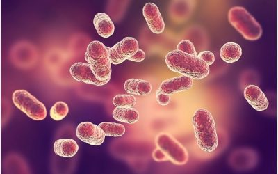 Microbiome: The Key To Optimal Skin Health?